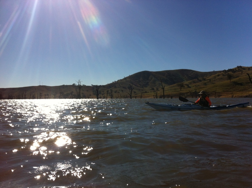 Kayaking Lake Hume under a sparkling clear sky.  Drowned trees and rolling green hills behind.