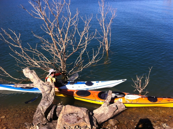 Bronwyn holding both kayaks between a drowned tree and a big stump at the water's edge, Lake Eildon.